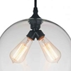 "Picture of 12"" 2 Light Down Mini Pendant with Transparent finish"