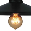 "Picture of 13"" 1 Light  Flush Mount with Black finish"