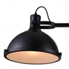 "Picture of 37"" 2 Light Island Chandelier with Black finish"
